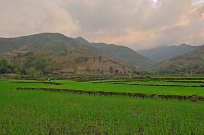 AS_Vietnam_0000011069