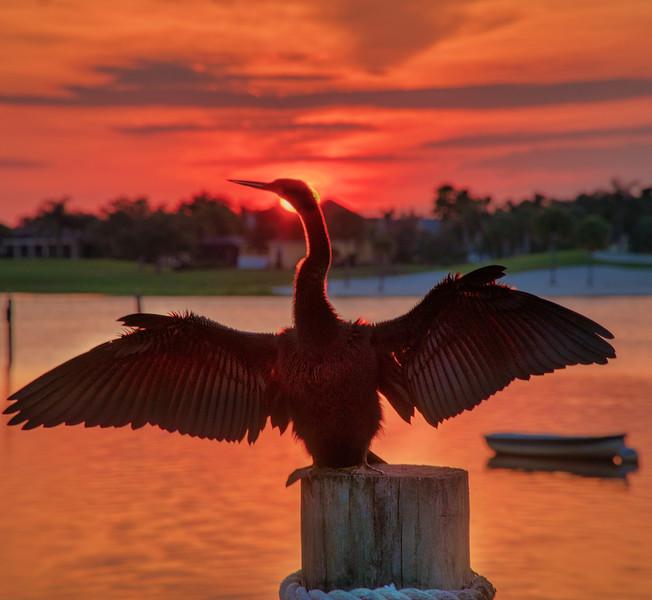 Lake Sumter-109-Edit.jpg