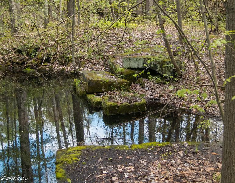 quarry reflections 051316-4.jpg