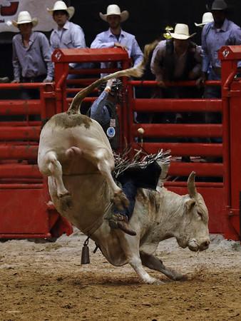Humble Rodeo