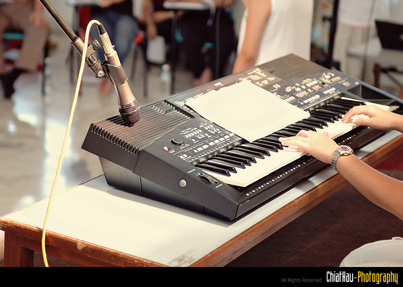 They could play keyboard as well!