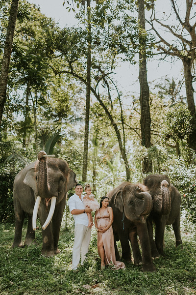 VTV_family_photoshoot_elephants_Bali_ (61).jpg