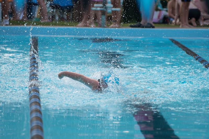 lcs_swimming_kevkramerphoto-684.jpg