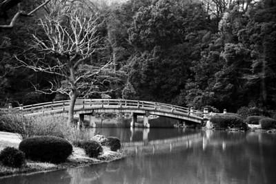 Tokyo & Beyond