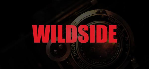 鉁� Wildside