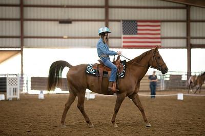 Horse 44