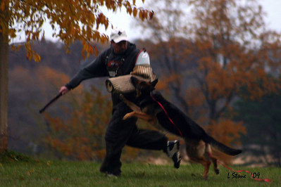 2009 Training at OG Edgerton Schutzhund Club