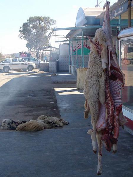 005_Tunisie_Typique.jpg