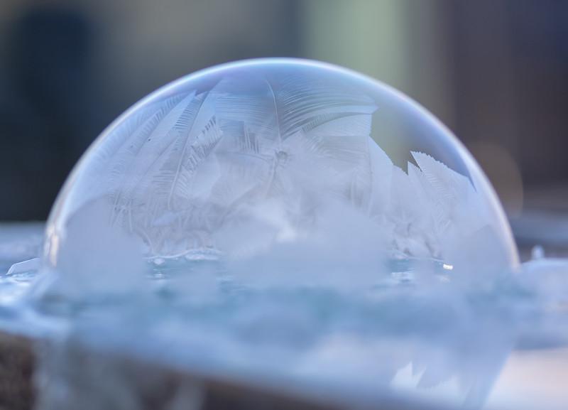 20190130-FrozenBubbles-Misc-1.jpg