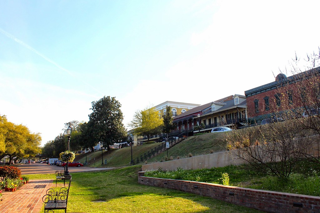 A riverfront park in Natchitoches sits beneath the main street with rows of benches and trees