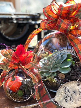 Autumn Creations by Cathy T