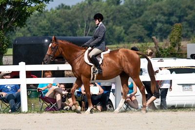 Wyoming County Roundup Classic Hnter Under Saddle SR