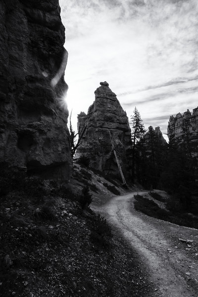 Bryce BW Path - Tip 6 and 2.jpg