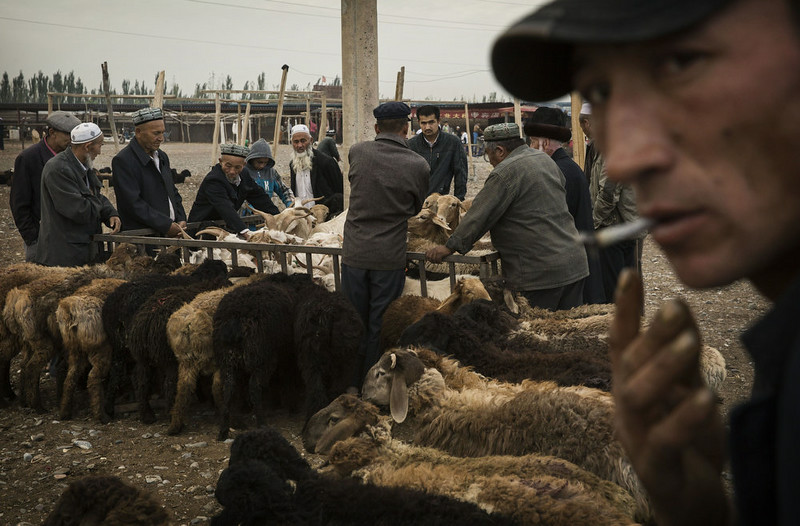 . KASHGAR, CHINA - AUGUST 03: Uyghurs inspect sheep for sale at a livestock market on August 3, 2014 in Kashgar, Xinjiang Province, China. Nearly 100 people have been killed in unrest in the restive Xinjiang Province in the last week in what authorities say is terrorism but advocacy groups claim is a result of a government crackdown to silence opposition to its policies. China\'s Muslim Uyghur ethnic group faces cultural and religious restrictions by the Chinese government. Beijing says it is investing heavily in the Xinjiang region but Uyghurs are increasingly dissatisfied with the influx of Han Chinese and uneven economic development.  (Photo by Kevin Frayer/Getty Images)