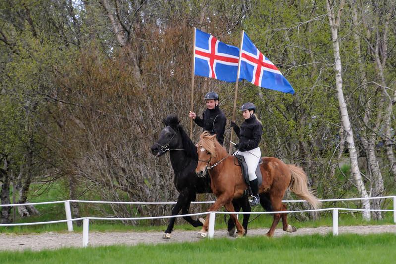 Icelandic Horse Show - 1 - Friðheimar Farm -  Bláskógabyggð, Iceland