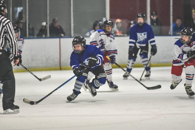 Leafs-81.jpg