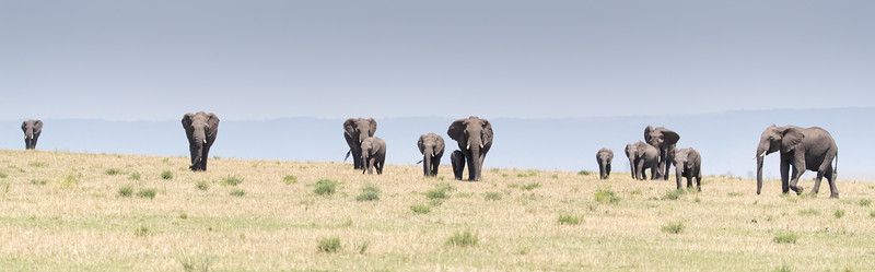 Africa - 101416 - 3283.jpg