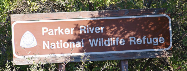 Parker River National Wildlife Refuge - November 2011