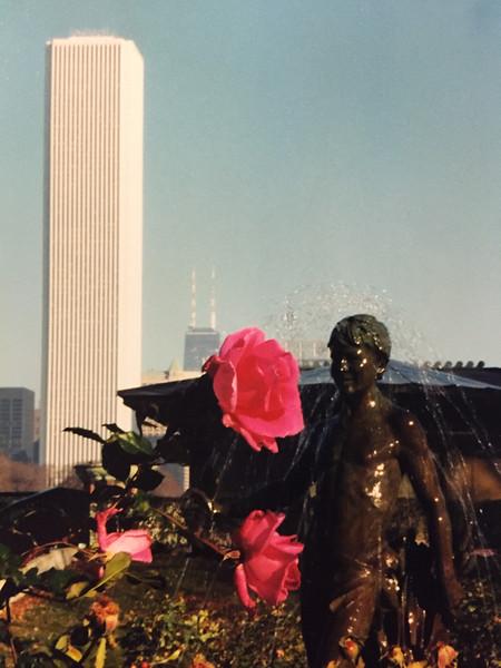 Rose Garden, Grant Park, Chicago, IL  c.1999
