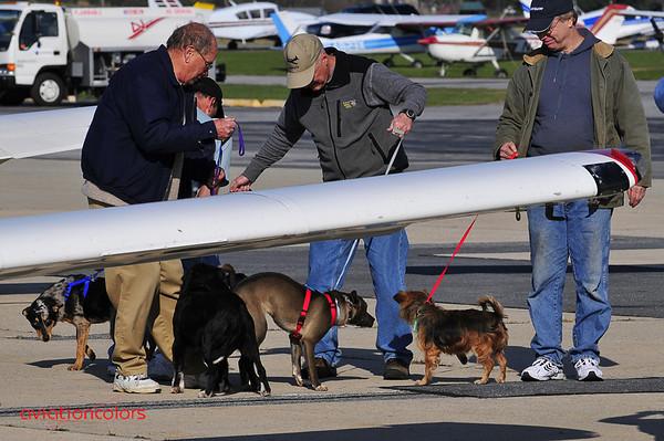 Animal Rescue Flights