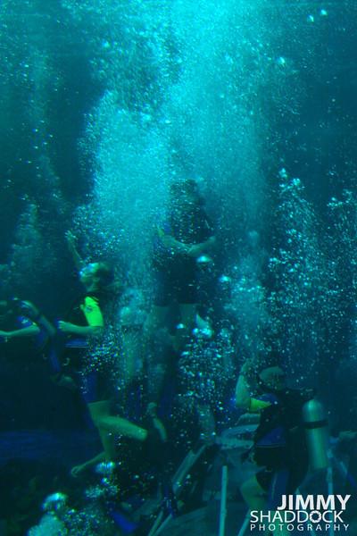 Disney 2005 466.jpg