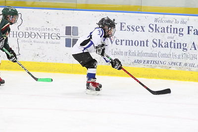 2018 Essex YAMBOREE - SATURDAY - UVHA White vs HHA 2