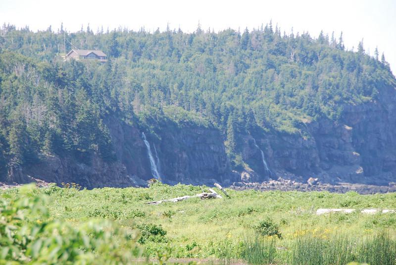 Whale Cove - 4