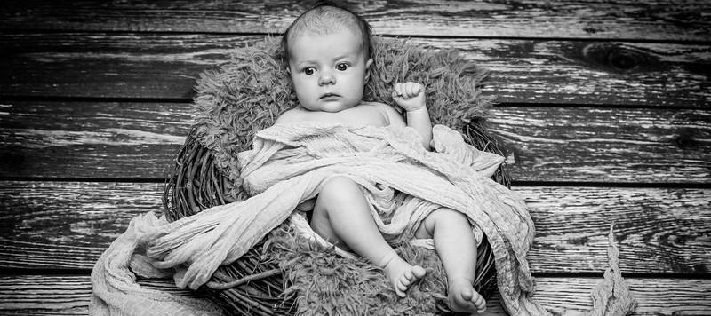 newborns-01.jpg