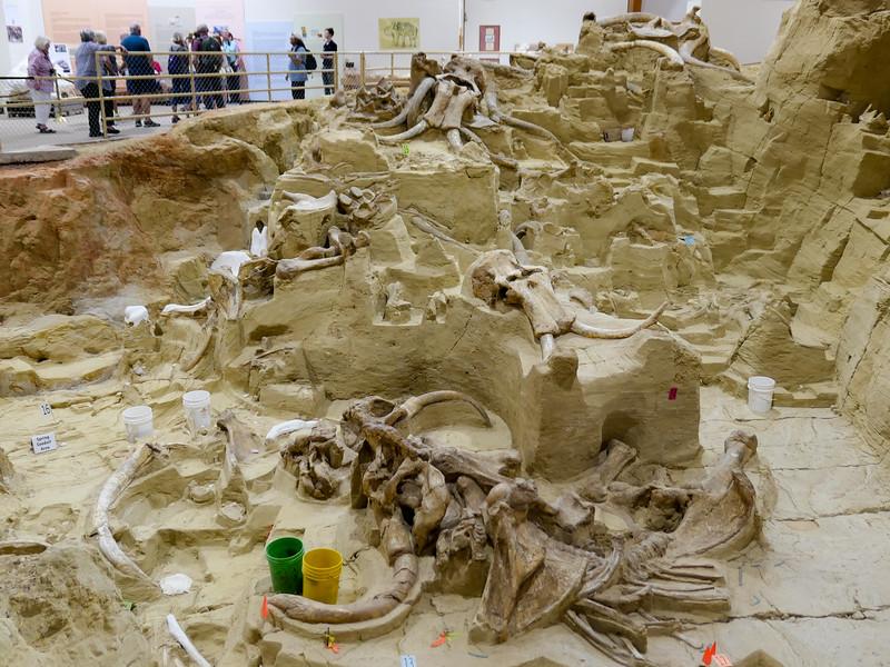 Mammoth Site in Hot Springs, South Dakota