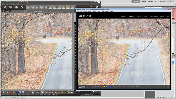 100-percent detail comparison of lightroom and olympus viewer 3