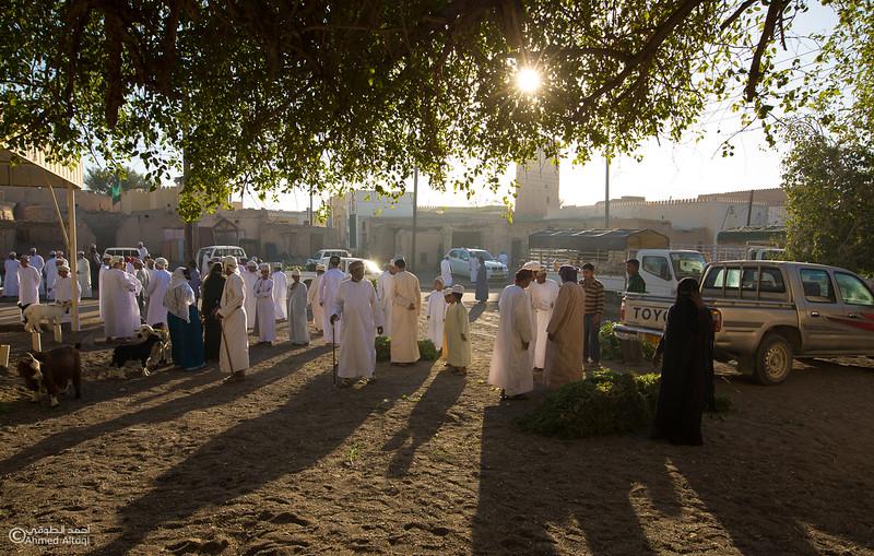 FE2A9626-Mudhaibi- Oman.jpg