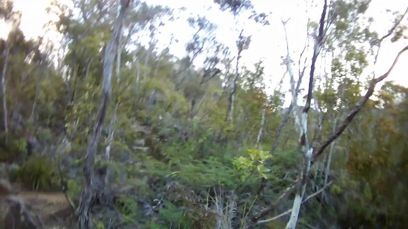2014-07 New Zealand 0517.MOV