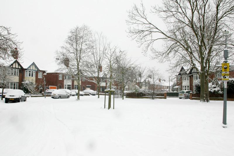 Snow 2010 081.jpg