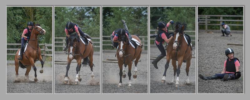 Lincomb Equestrian
