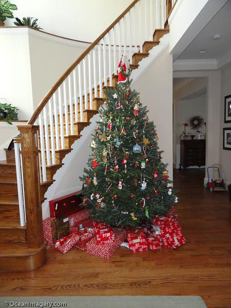 20121225 Arlington, VA - Christmas Day
