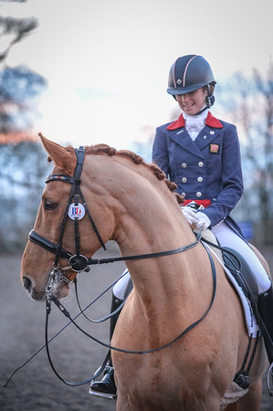 Lincomb EC Unaffiliated Dressage, 5th February 2017