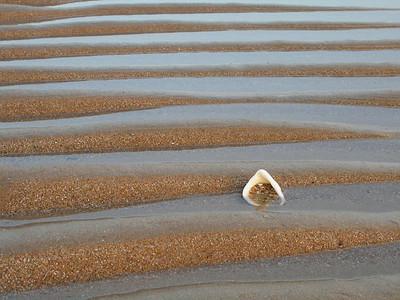A walk on the coast/ Un paseo por la costa