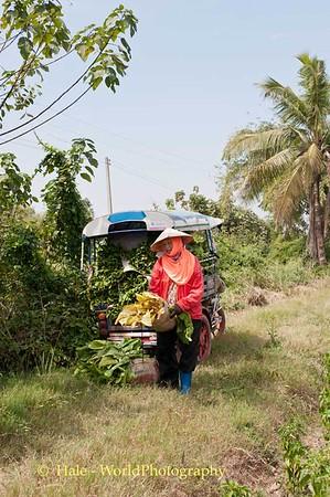 Thailand Tobacco