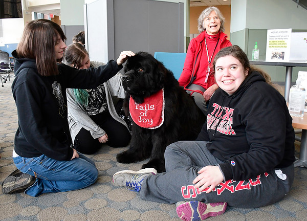 3/11/2020 Mike Orazzi | Staff Wrigley a Newfoundland handled by Laurel Rabschutz, while at Tunxis Community College in Farmington to help students relieve some mid-semester stress. Left to right:Aine Knapp, Mads Shea, Rabschutz and Caroline Morgan.