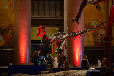 Genyouth Natural History Museum Event