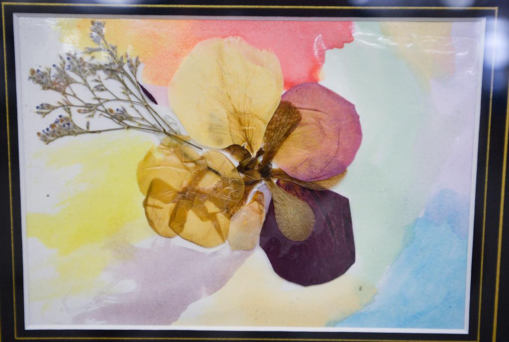 . Artwork by Amara Schaffhausen