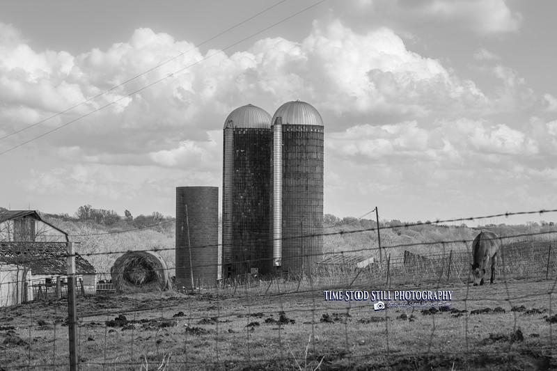 KC Landscape-64.jpg