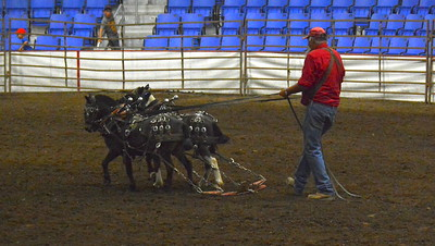 2017 ND State Fair Pony Pull