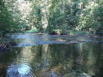 4B's Creek Walk