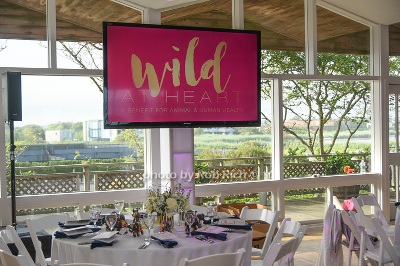 Wild at Heart to benefit Veterinarians International at the Bridgehampton Tennis & Surf Club  in Bridgehampton on 8-3-18. all photos by Rob Rich/SocietyAllure.com ©2018 robrich101@gmail.com 516-676-3939