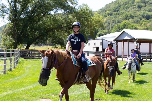 2020 August Horsemanship Lv 1