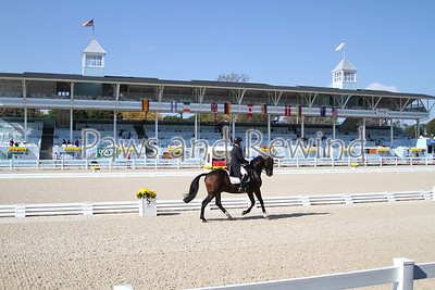 FEI Olympic Grand Prix Special CDIW USEF HP $4500.00 Camera 2