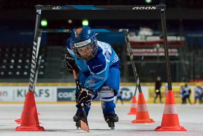 EVZ Hockeyschule 2015
