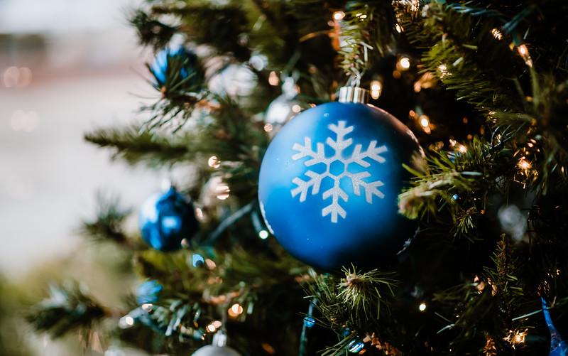 December 06, 2018 happy holidays DSC_3049.jpg