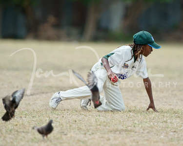 20190317 BCS U13 Cricket Passage-v-StCatherines